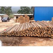 Cherestea de rasinoase de la Sc Woodex Utility Srl