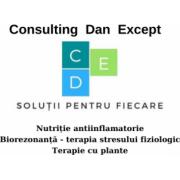 Consulting Dan Except Srl