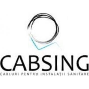 Cabsing Prodserv S.R.L