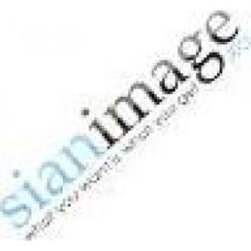 Sian Image Media Srl