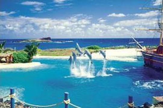 Croaziera Hawaii