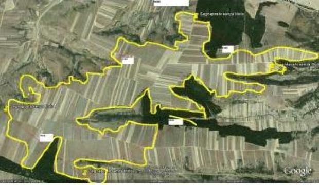Teren agricol 1500 ha in Dolj