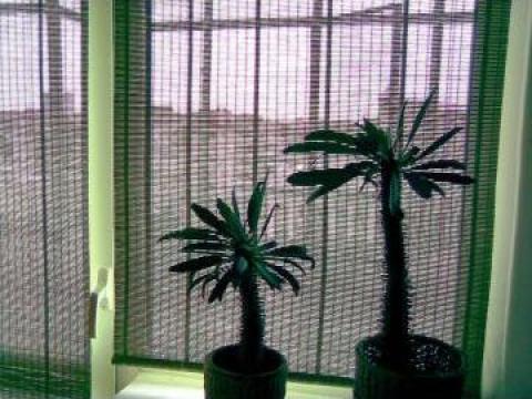 Amenajare interior cu rulou din bambus verde de la Soledo Presto Srl