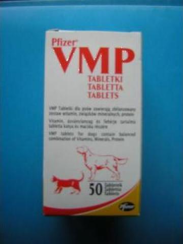 Tableta cu vitamine pentru caini, pisici VMP
