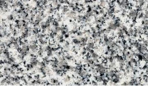 Placi granit G603 de la Quanzhou Midsun Import & Export Co., Ltd