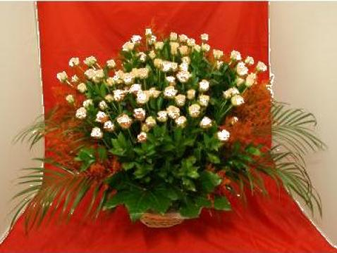 Cos flori isis cu 23 fire, mod 595 de la Floraria Stil