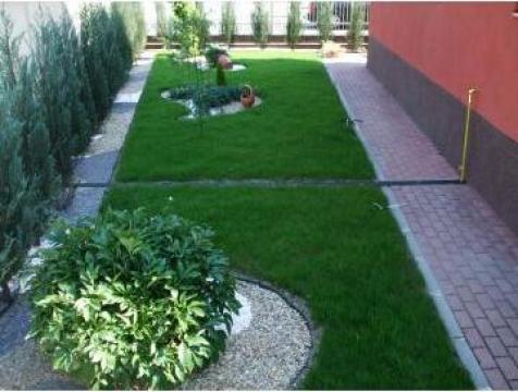 Gazon si plante pentru gradina si curte