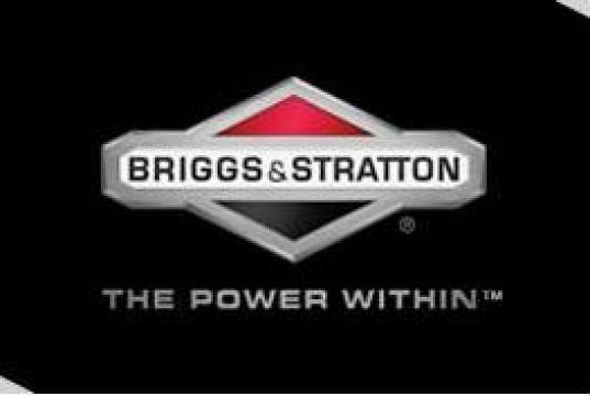 Reparatie, service motoare Briggs&Stratton
