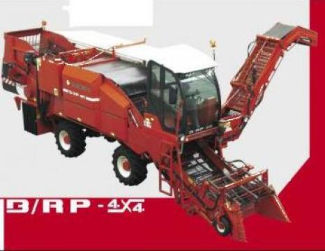 Masina recoltat rosii B/RP 4X4 de la Metex Imp Srl.