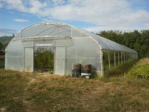 Solar legume de la S.c. Lifan S.r.l.