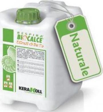 Consolidant tencuieli Biocalce Silicati di Sodio Kerakoll
