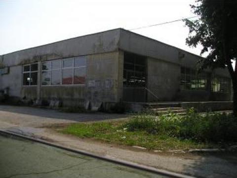 Complex comercial hala de productie Constanta