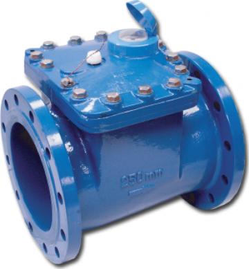 Contor apa rece BMeters WDE DN 250, DN 300, DN 400, DN 500 de la Next Technology