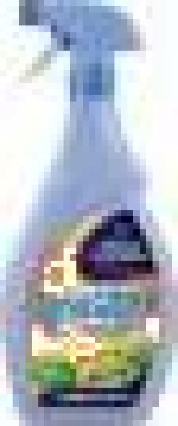 Degresant Felce Azzurra Casa Sgrassatore 750ml de la G & G Paper Srl