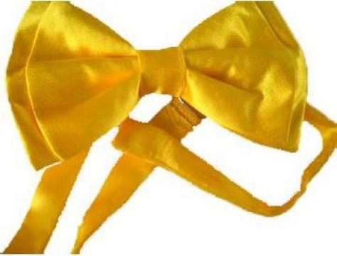 Papion galben, lucios de la Johnny Srl.