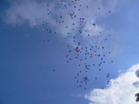 Baloane cu heliu Oradea de la Fun Party Event