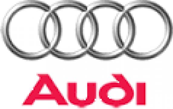 Rectificare casete de directie Audi
