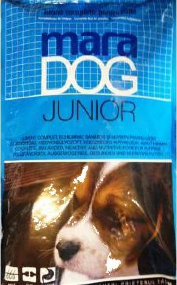 Hrana uscata caini tineri Maradog Junior de la Panthera Med