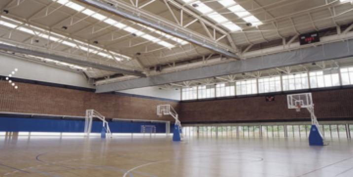 Podea sport de interior (personalizata) Roma de la Alveco Montaj Srl