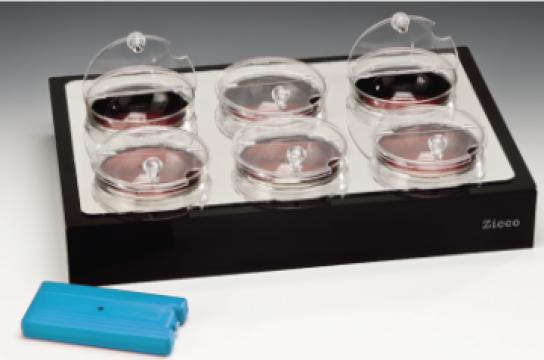 Stand de expunere racire cu 6 boluri sticla cu capac de la Basarom Com