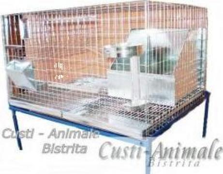 Cusca iepuri reproductie de la Bobilech Srl