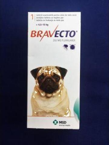 Produs veterinar anti capuse si purici Bravecto 4.5 - 10 kg