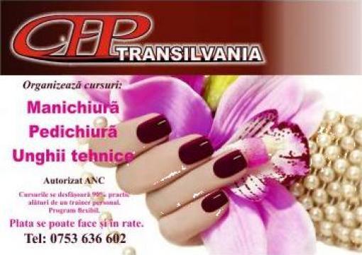 Transilvania cursuri de formare profesionala