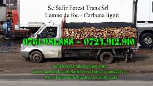 Lemne de foc, fag, carpen si stejar de la Sc Safir Forest Trans Srl