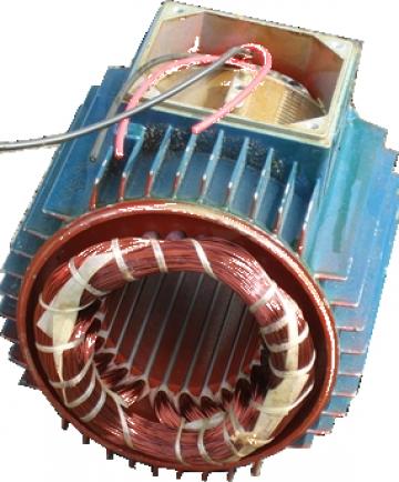 Reparatii si rebobinari pentru Motoare electrice 132 KW de la Electrofrane