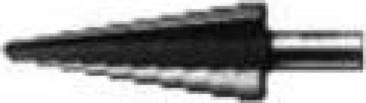 Burghie in trepte, conice de la Electrofrane