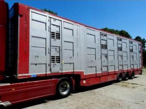 Semi trailer transport animale Michieletto