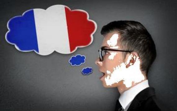 Curs limba franceza de la Profesional New Consult