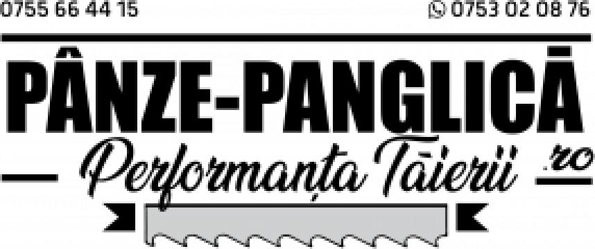 Panza 2450x27x5/8 fierastrau panglica metal F.M.B. Phoenix de la Panze Panglica Srl