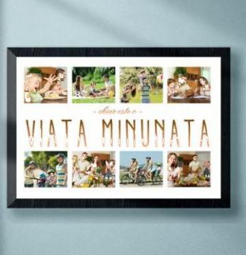 Rama tablou Viata Minunata