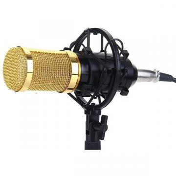 Microfon Profesional BM800 cu inregistrare vocala si Karaoke de la Startreduceri Exclusive Online Srl - Magazin Online - Cadour