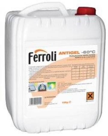 Antigel concentrat Ferroli -60C, 10 kg de la Axa Industries Srl
