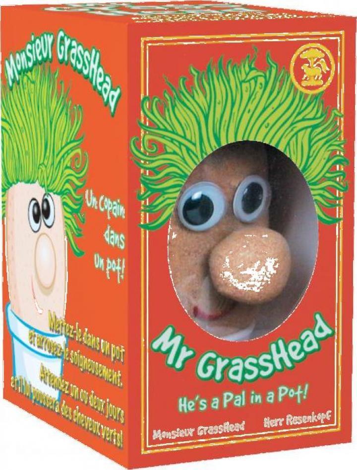 Decoratiune Domnul Cap de iarba